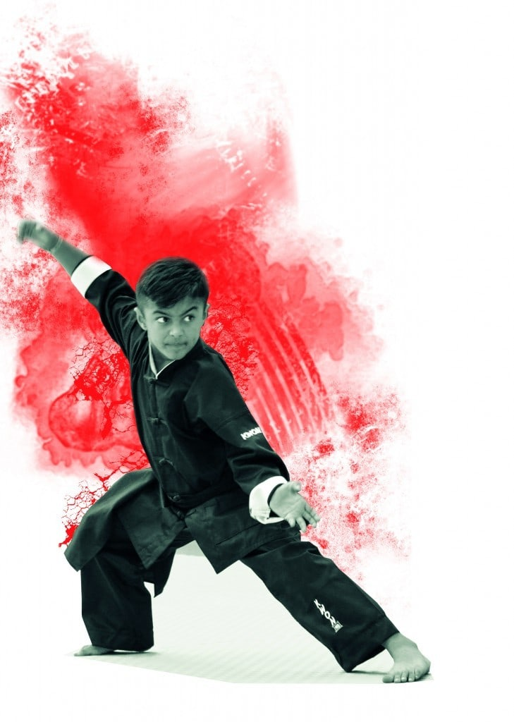 Kung Fu, Kampfkunst, Selbstverteidigung, Fitness, Elastizität, gewichtsreduktion, Shaolin Kung Fu, David Kumar, Sportschule Alex, MMK GALLERY