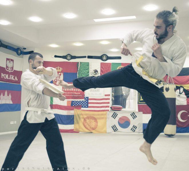 Taekwondopruefung Diamantis & Onur 2017-8258