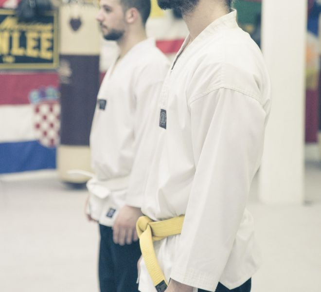 Taekwondopruefung Diamantis & Onur 2017-8265