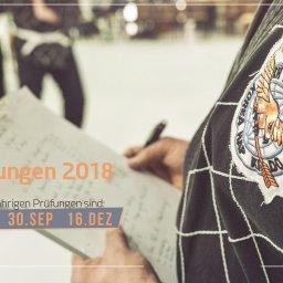 Die Termine für die Gürtelprüfungen 2018 in den Kampfkünsten Taekwondo, Hapkido, KungFu und Kickboxen. Sportschule Alex Düsseldorf