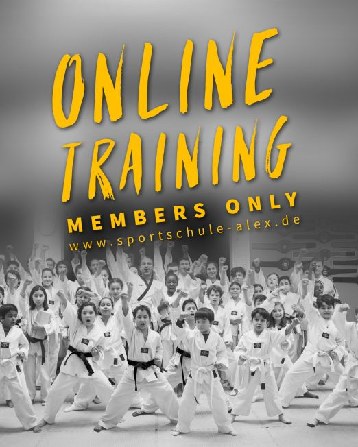 Taekwondo Online Training